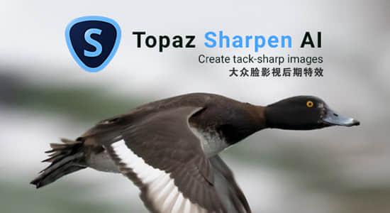 图片锐化清晰处理软件 Topaz Sharpen AI 2.2.4 Win/Mac